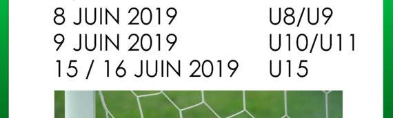 RESULTATS FC VILLENEUVE  WEEKEND DES 11 ET 12 MAI 2019
